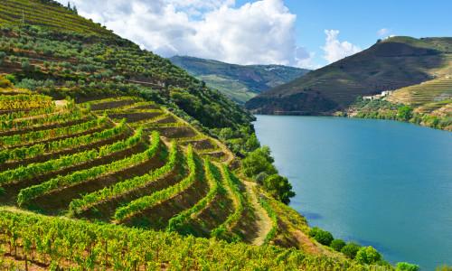 Porto og Douro